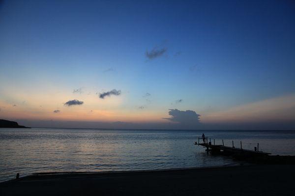 西表島でのある日のできごと